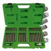 JBM Estuche de 42 piezas para tornillos de 12 y 6 cantos - inviolable 50985